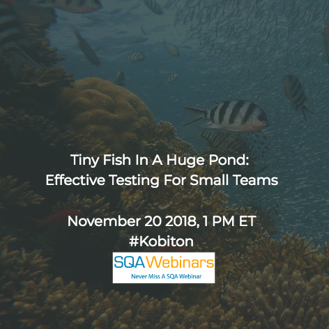 SQAWebinar642: Tiny Fish In A Huge Pond:  Effective Testing For Small Teams #SQAWebinars20Nov2018 #Kobiton #Magenic